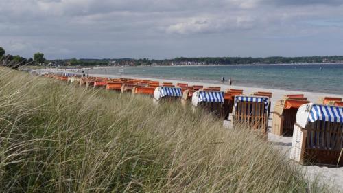 Strandkörbe am idyllischen Sandstrand